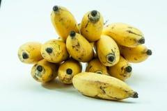 Mazzo di piccola frutta gialla della banana Fotografia Stock Libera da Diritti