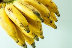 Mazzo di piccola frutta gialla della banana Fotografie Stock Libere da Diritti