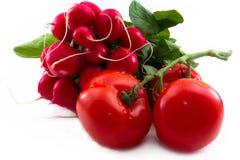 Mazzo di pomodori del und del ravanello del giardino Immagini Stock Libere da Diritti