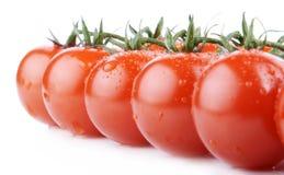 Mazzo di pomodori di ciliegia Immagini Stock