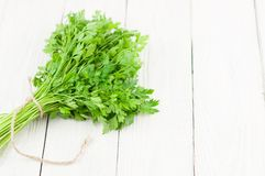 Mazzo di prezzemolo fresco crudo verde limitato dalla corda marrone fotografie stock