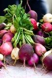 Mazzo di ravanelli da vendere al mercato degli agricoltori Fotografia Stock
