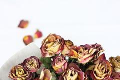Mazzo di rosa appassito Fotografia Stock Libera da Diritti