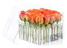 Mazzo di rose arancio in contenitore sopra bianco Fotografia Stock Libera da Diritti