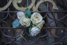 Mazzo di rose bianche immagini stock