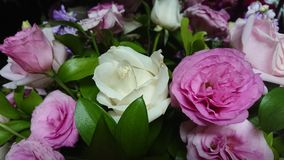 Mazzo di rose colorate Immagine Stock