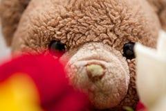 Mazzo di Rose Flowers con Teddy Bear nella fine del fondo su fotografia stock