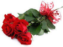 Mazzo di rose rosse Fotografie Stock
