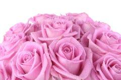 Mazzo di rose sopra bianco Immagine Stock Libera da Diritti