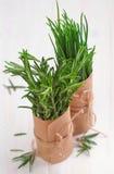Mazzo di rosmarini e di erba cipollina freschi fotografie stock libere da diritti