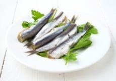 Mazzo di sardine crude ordinate sul piatto con prezzemolo Immagine Stock