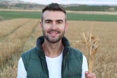 Mazzo di trasporto del giovane uomo attraente di grano maturo Immagine Stock