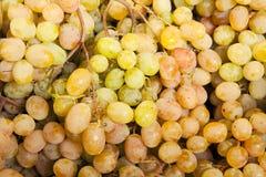 Mazzo di uva al mercato Fotografia Stock Libera da Diritti