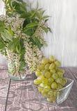 Mazzo di uva bianca sulla tavola in un contenitore di vetro trasparente alla luce di primo mattino dalla finestra e dal bello sha Fotografia Stock