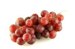 Mazzo di uva con le gocce dell'acqua Fotografia Stock