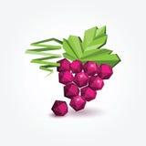 Mazzo di uva, illustrazione del poligono Fotografia Stock Libera da Diritti