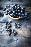 Mazzo di uva nera Fotografia Stock