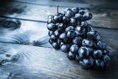 Mazzo di uva nera Immagini Stock Libere da Diritti