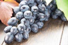 Mazzo di uva nera sulla tavola Fotografie Stock Libere da Diritti