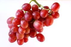 Mazzo di uva (rossa) Fotografie Stock