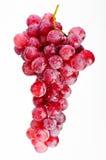 Mazzo di uva rossa. Fotografia Stock Libera da Diritti