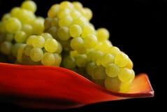 Mazzo di uva sul cassetto Immagini Stock Libere da Diritti