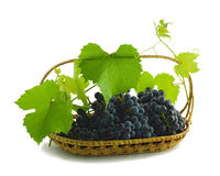 Mazzo di uva in un cestino Immagini Stock