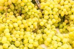 Mazzo di uva verde Immagini Stock Libere da Diritti
