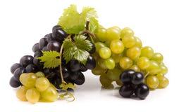 Mazzo di uva verde e blu con le foglie isolate su fondo bianco immagini stock libere da diritti