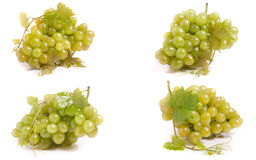Mazzo di uva verde isolata su priorità bassa bianca Insieme o raccolta immagine stock libera da diritti