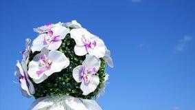 Mazzo di vari fiori nella mano contro il cielo blu archivi video