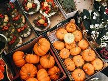 Mazzo di zucche arancio Fotografia Stock Libera da Diritti