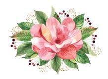 Mazzo floreale con la magnolia dell'acquerello Fotografie Stock