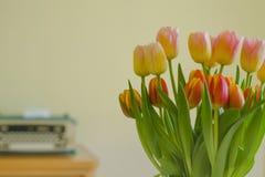Mazzo fresco dei tulipani con la macchina da scrivere d'annata nel fondo Fotografia Stock