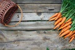 Mazzo fresco delle carote su fondo di legno rustico Immagini Stock Libere da Diritti