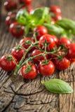 Mazzo fresco di pomodori maturi con le foglie del basilico sulla vecchia tavola di quercia immagini stock