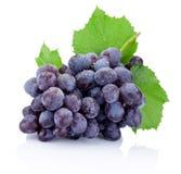Mazzo fresco di uva con le foglie isolate su fondo bianco Fotografia Stock