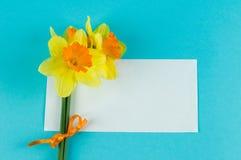 Mazzo giallo dei narcissuses e scheda di carta Fotografia Stock Libera da Diritti
