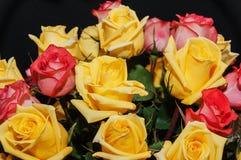 Mazzo giallo delle rose rosse Fotografie Stock