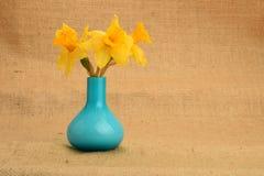Mazzo giallo inaridito del narciso in un vaso blu su fondo o Fotografia Stock
