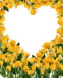 Mazzo giallo luminoso delle rose isolato su bianco Fotografie Stock Libere da Diritti