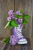 Mazzo lilla in alto sneakerhttp://web superiore porpora dreamstime COM/oms_bulk PHP? pg=5#row5 Immagine Stock Libera da Diritti