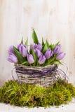 Mazzo lilla di tulipani Fotografie Stock Libere da Diritti