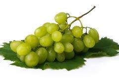 Mazzo maturo di uva Fotografia Stock