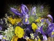 Mazzo nei toni lilla e gialli Fotografia Stock
