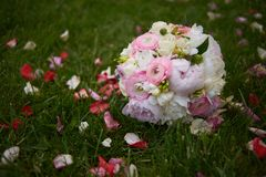 Mazzo nuziale Bello mazzo nuziale dalle rose rosse su erba all'aperto Immagine Stock Libera da Diritti