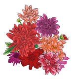 Mazzo romantico del fiore del crisantemo isolato Fotografie Stock