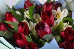 Mazzo romanzesco del fiore Fotografia Stock