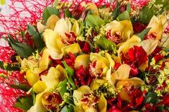 Mazzo romanzesco del fiore Immagini Stock Libere da Diritti