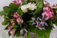 Mazzo romanzesco del fiore Immagine Stock